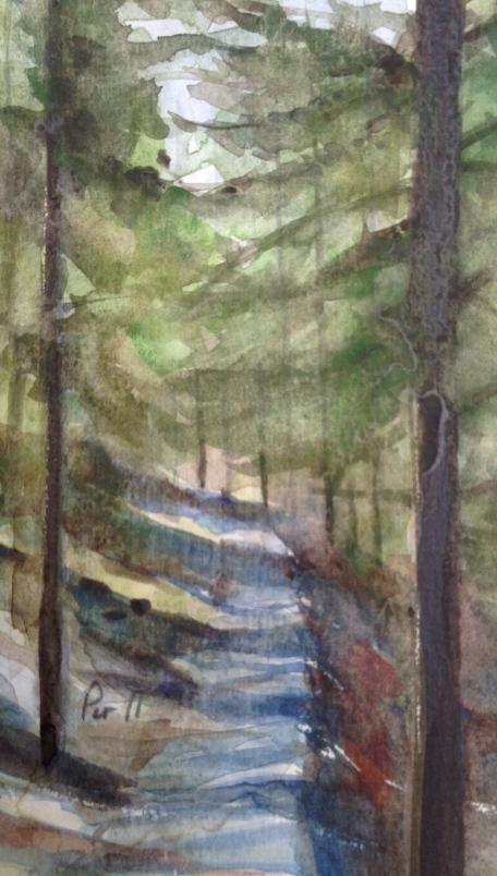 Skogsinteriør - 15x20, akvarell