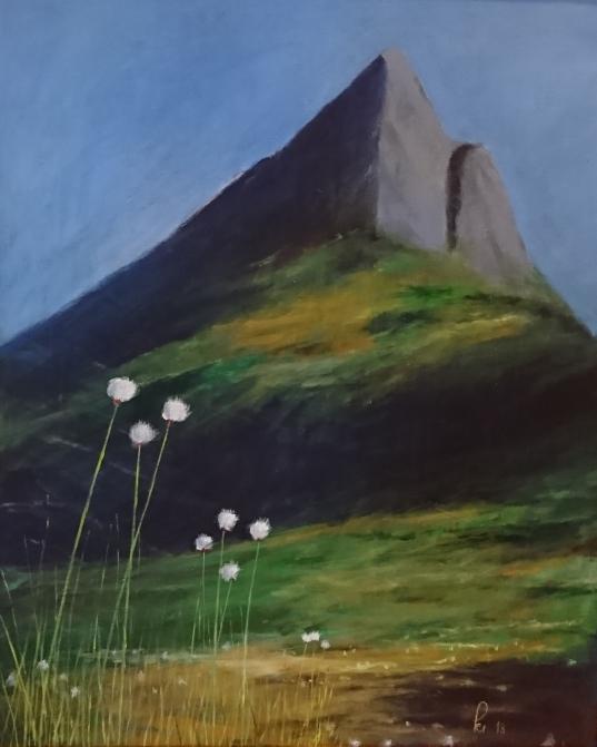 Myrull mot fjell (80x100 cm)